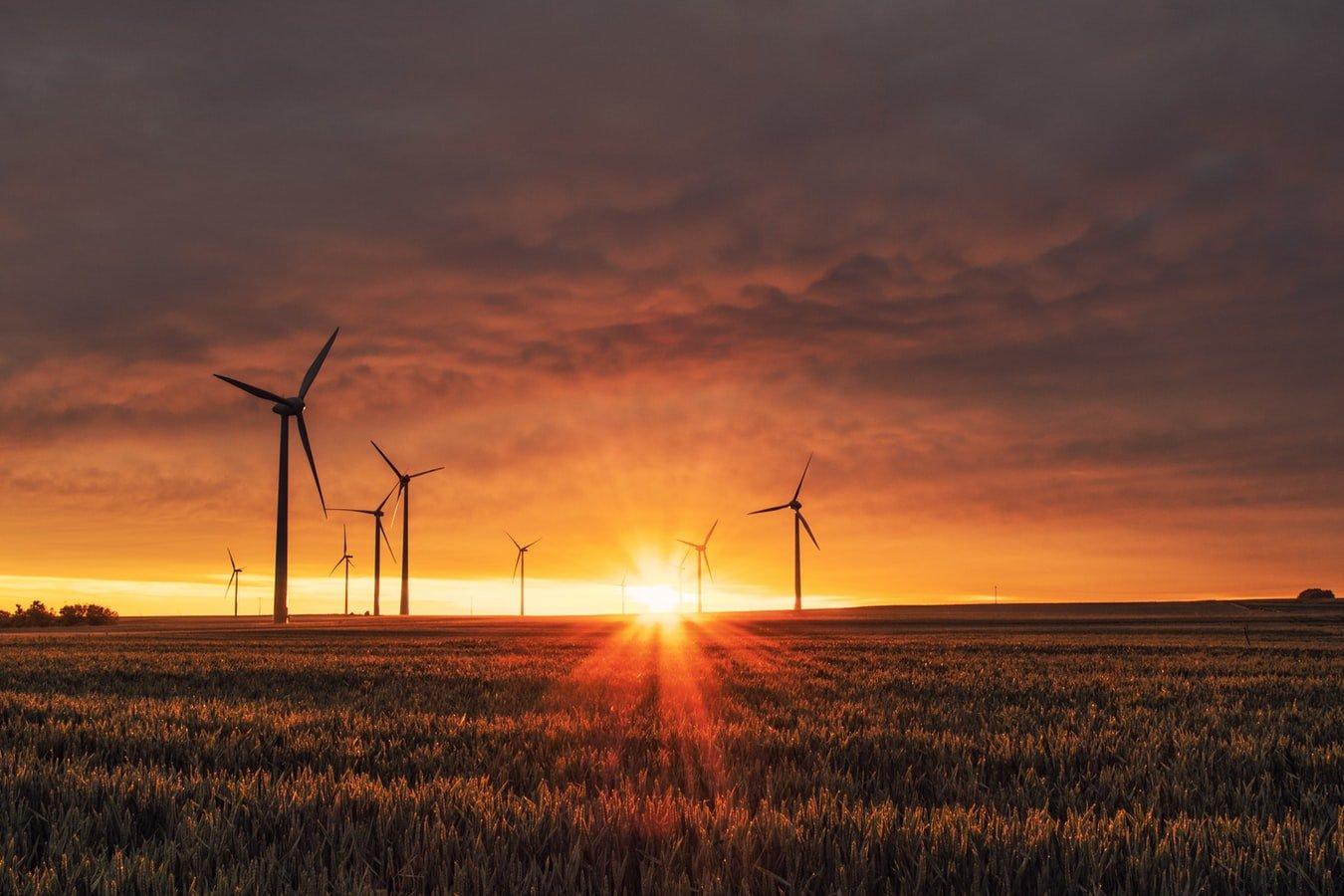 Grantly - Nagrada za Sončno gorivo - umetna fotosinteza
