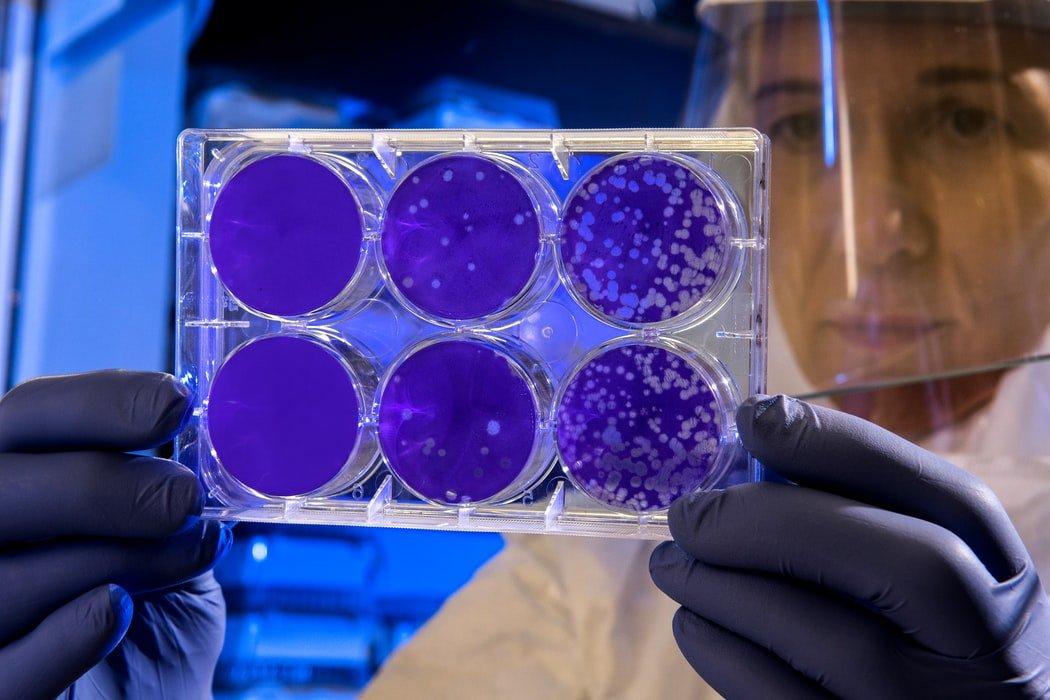 Grantly - Načrt za vzpostavitev evropskega partnerstva za protimikrobno odpornost