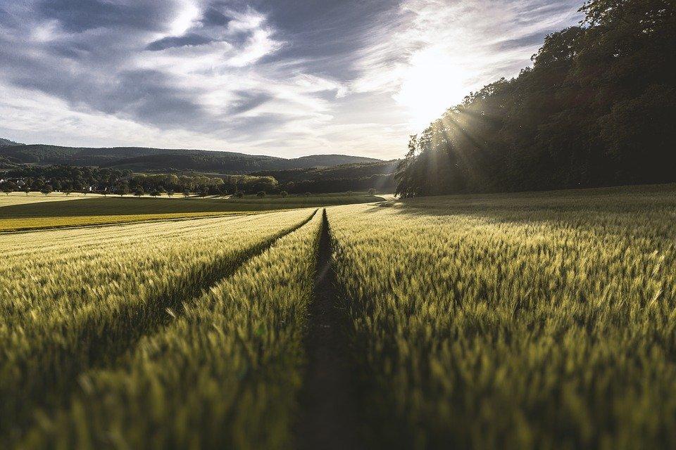Grantly - Agroekološki pristopi
