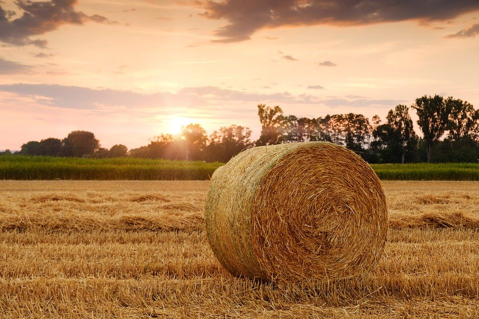 Grantly - Mreža za podnebno pametno kmetovanje