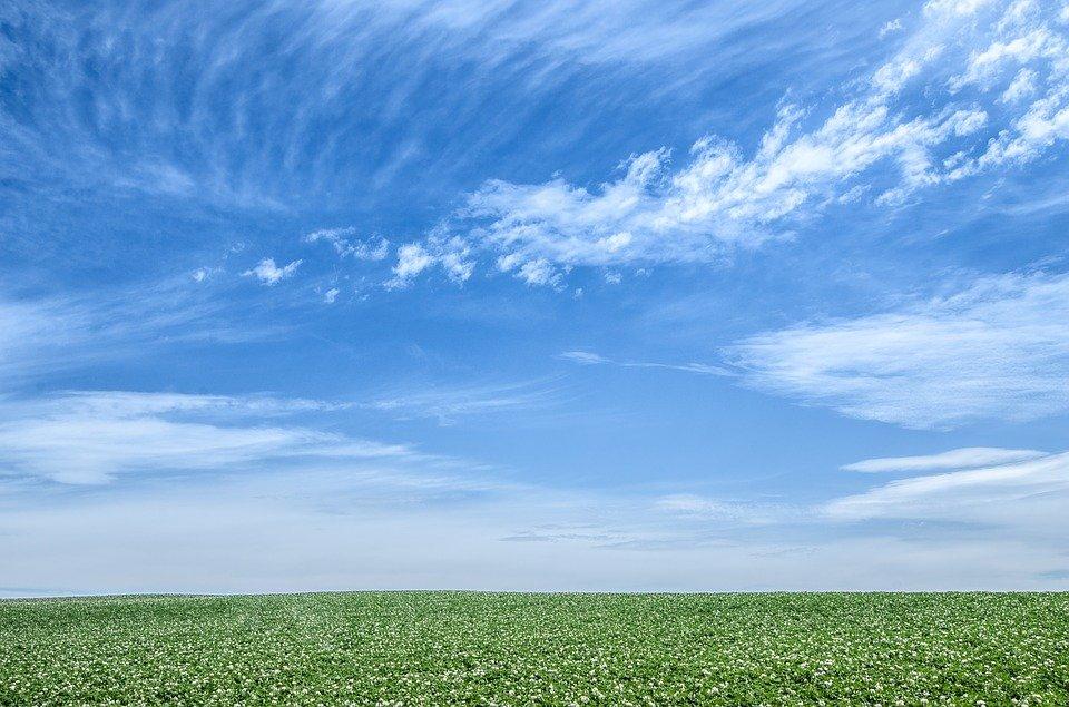 Grantly - Podpora procesom IPBES in IPCC