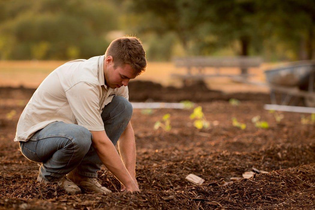 Grantly - Šolanje v srednjih poklicnih in srednjih strokovnih kmetijskih izobraževalnih programih