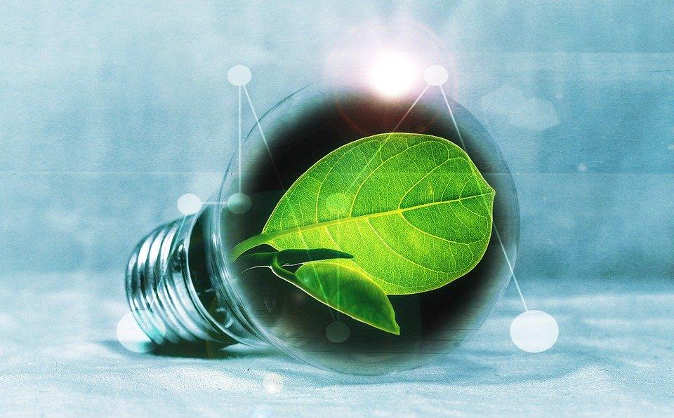 Grantly - EIB program za spodbujanje univerzitetnih raziskav - Zeleni prehod