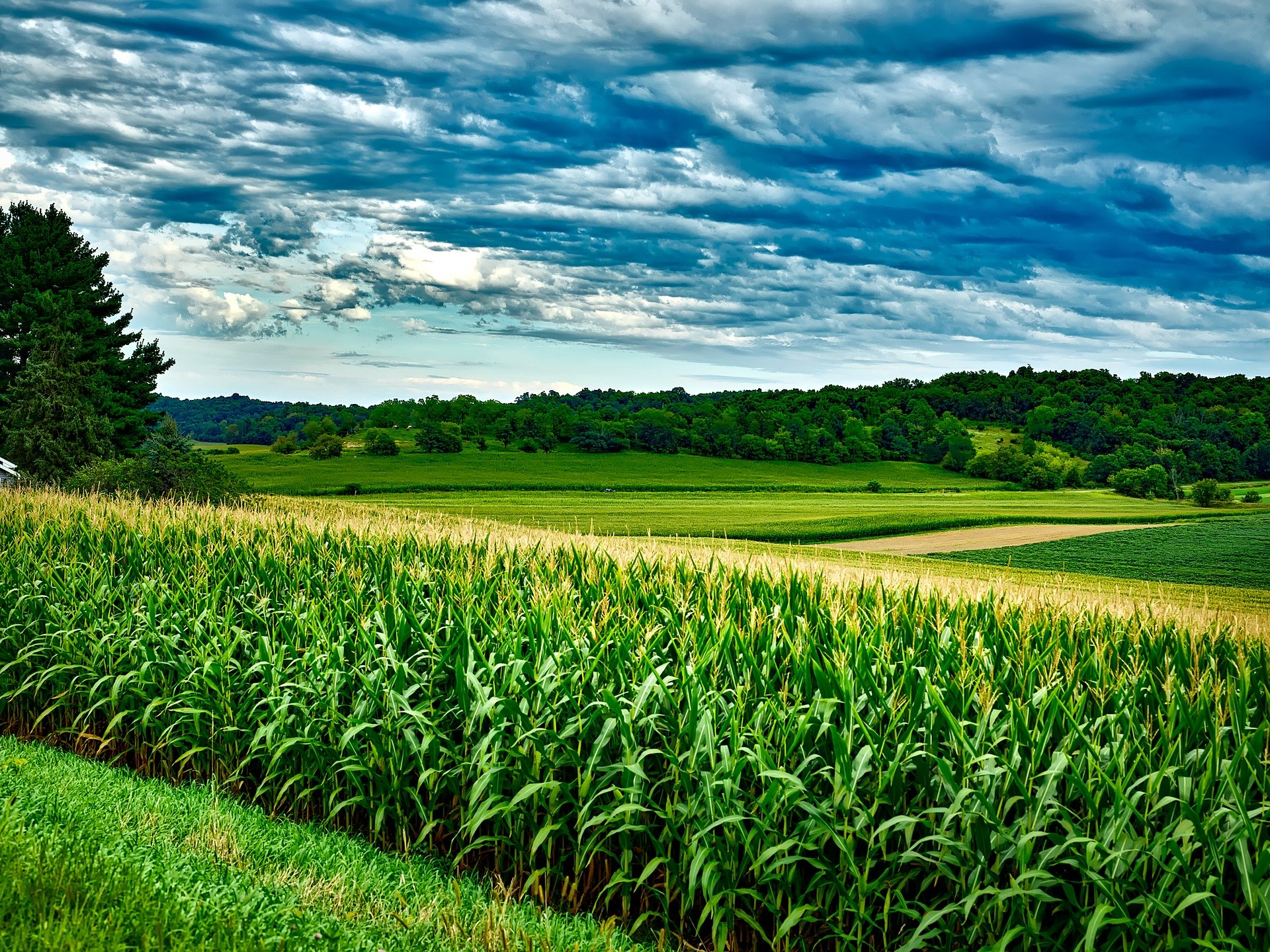 Grantly - Aktualni razpisi s področja podeželja