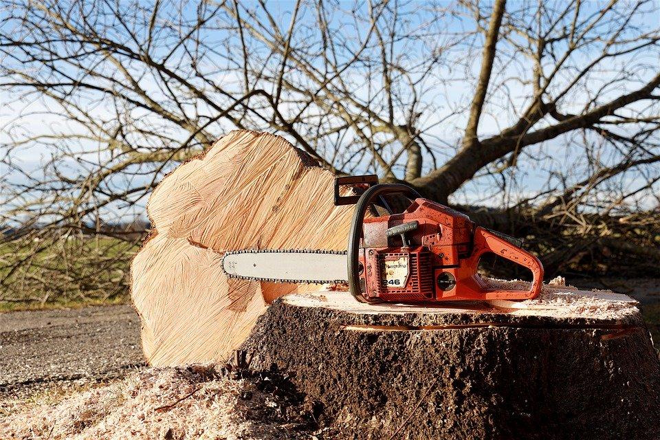 Grantly - Nakup nove mehanizacije in opreme za sečnjo in spravilo lesa