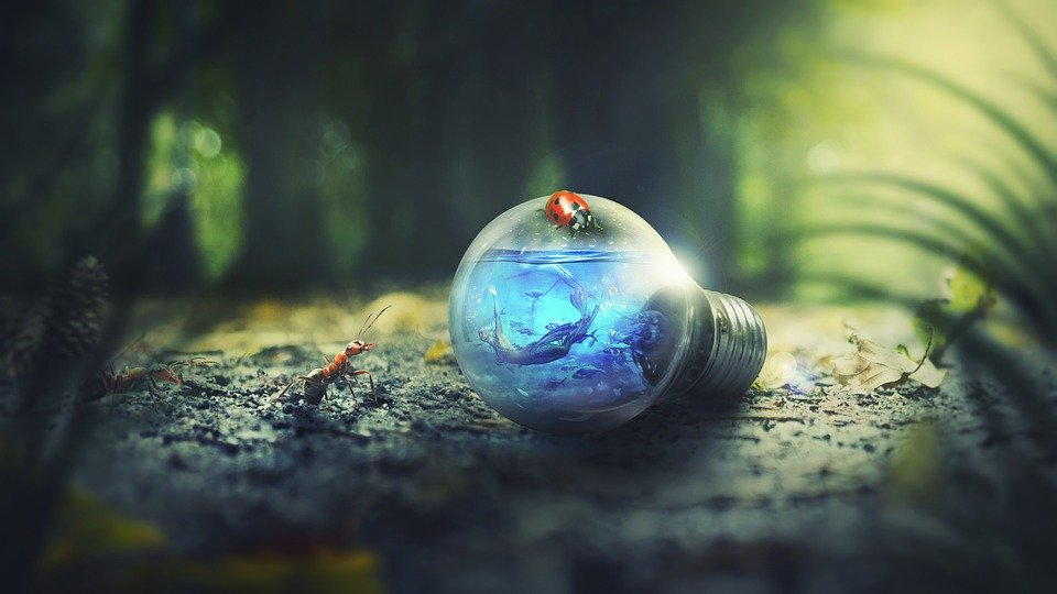 Grantly - Razpis za inovacije EIT Climate-KIC 2022